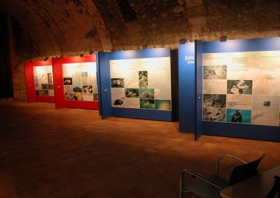 galerias-y-muros-mil-wall (14)
