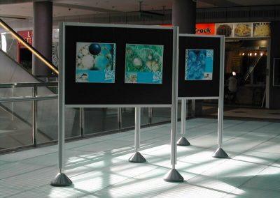 exposiciones-itinerantes (1)