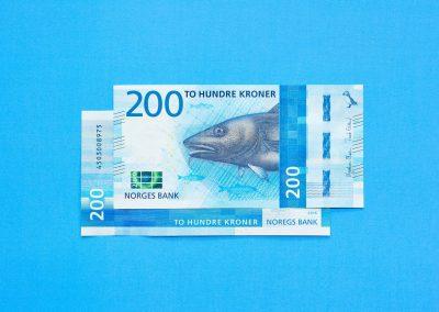 billete-noruega-nuevo-cebraexpress.com-3